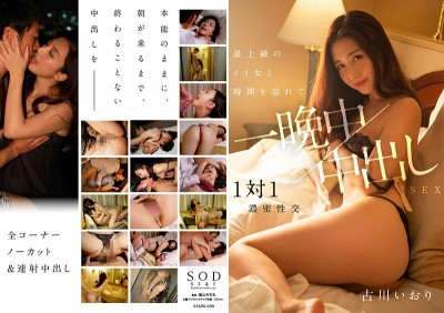 STARS-008 A Night Of Forgetting The Time And Having Creampie Sex With A Top Class Woman, Iori Kogawa