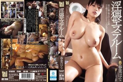 ADN-069 Obscene Massage Parlor Chambers Hana Haruna